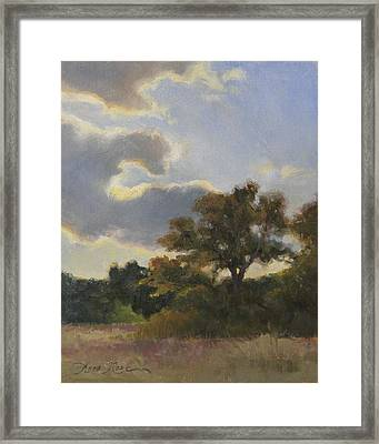 Evening Summer Clouds Framed Print by Anna Rose Bain