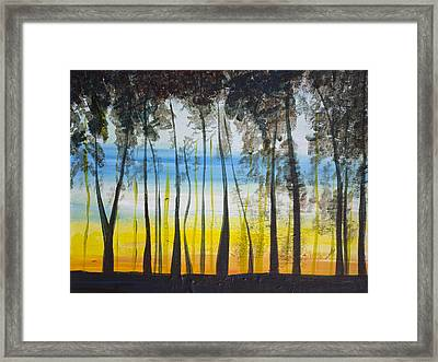 Evening Trees Framed Print