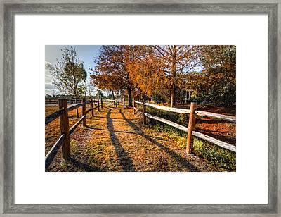 Evening Walk Framed Print by Debra and Dave Vanderlaan
