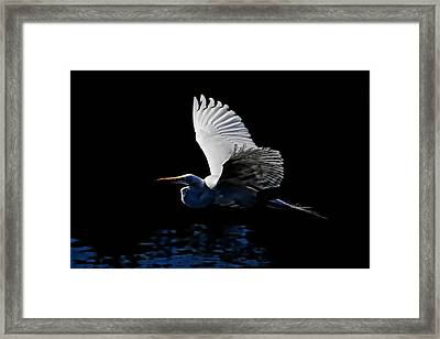 Evening Whisper Framed Print