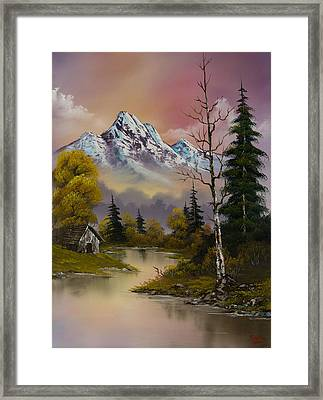 Evening's Delight Framed Print by C Steele