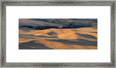 Evening's Glow Framed Print by Latah Trail Foundation