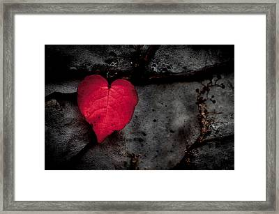 Eventually They Fall - Seize The Moment Framed Print by Jen Baptist