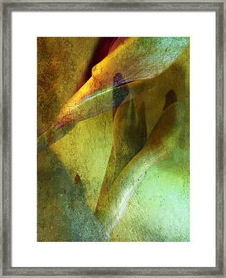 Ever Caring Framed Print by Shirley Sirois
