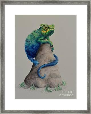 Ever Changing Framed Print by Kathleen Keller