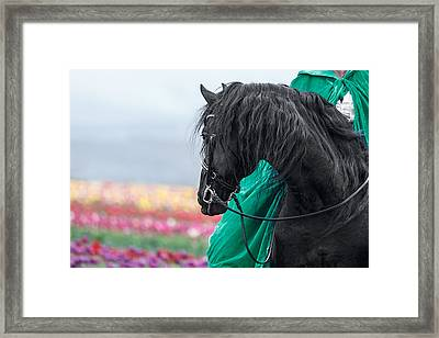 Ever Watchful D7210 Framed Print by Wes and Dotty Weber