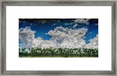 Reflected Everglades 0203 Framed Print