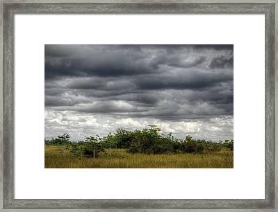 Everglades 6892 Framed Print by Rudy Umans