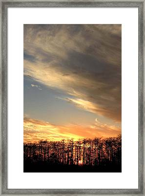 Everglades Clouds Framed Print