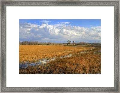Everglades Clouds Framed Print by Debra and Dave Vanderlaan