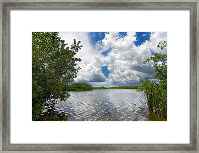 Everglades Lake - 0278 Framed Print by Rudy Umans