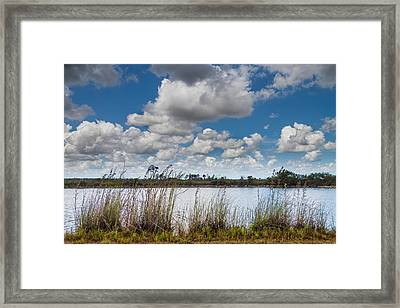 Everglades Lake 6853 Framed Print by Rudy Umans
