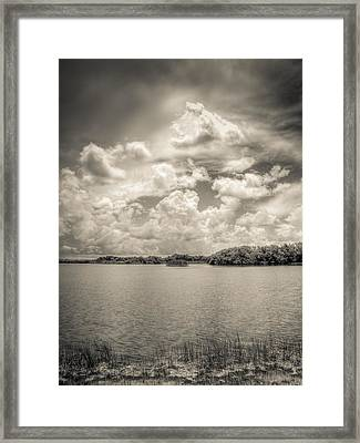 Everglades Lake 6919 Bw Framed Print by Rudy Umans