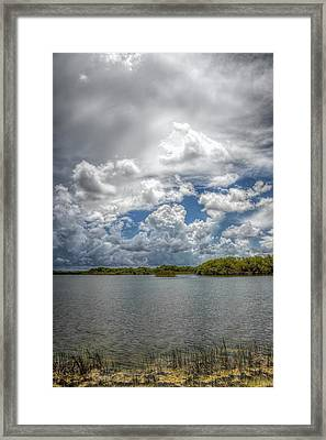 Everglades Lake 6919 Framed Print by Rudy Umans