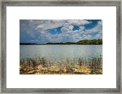Everglades Lake 6930 Framed Print by Rudy Umans