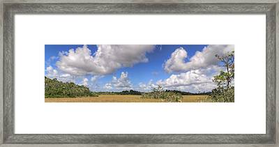 Everglades Landscape Panorama Framed Print by Rudy Umans