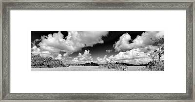 Everglades Panorama Framed Print by Rudy Umans