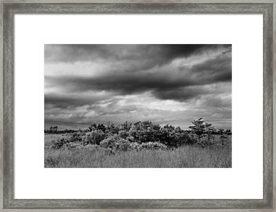 Everglades Storm Bw Framed Print by Rudy Umans