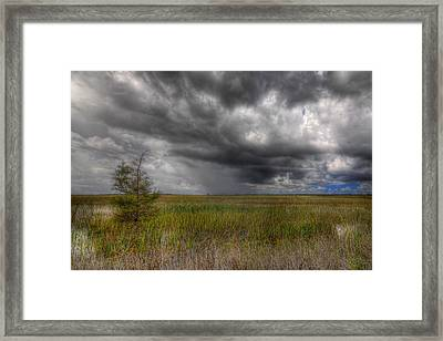 Everglades Storm Framed Print by Rudy Umans