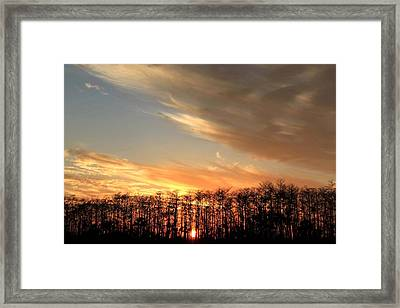 Everglades Sunset Framed Print