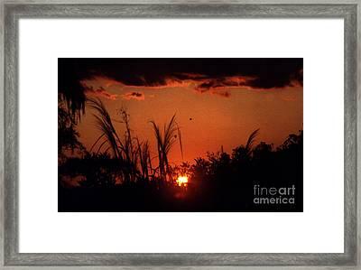 Everglades Sunset Framed Print by Steven Valkenberg