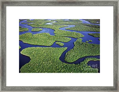 Everglades Waterways Framed Print