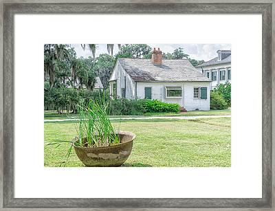 Evergreen Plantation Back Framed Print