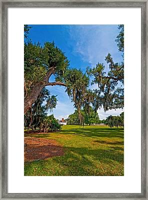 Evergreen Plantation II Framed Print by Steve Harrington