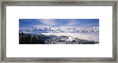 Evergreen Trees On A Snow Covered Framed Print