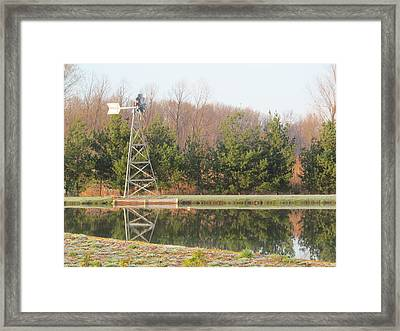 Evergreens And Windvane Framed Print by Tina M Wenger