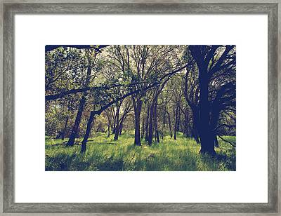 Every Day I'm Learning Framed Print
