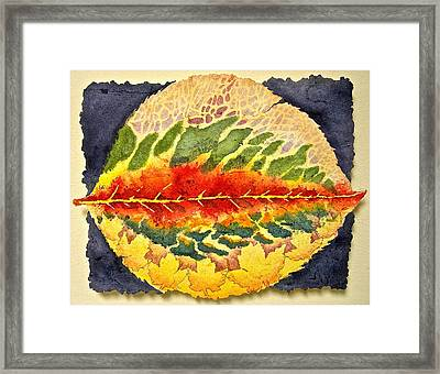 Every Leaf Has A Story Framed Print by Carolyn Rosenberger