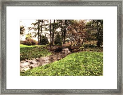 Every Tear Drop Is A Waterfall Framed Print by Thomas Woolworth