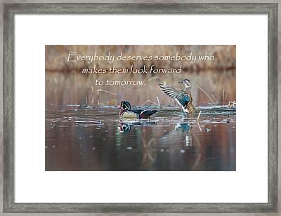 Everybody Deserves Somebody Framed Print by Bill Wakeley