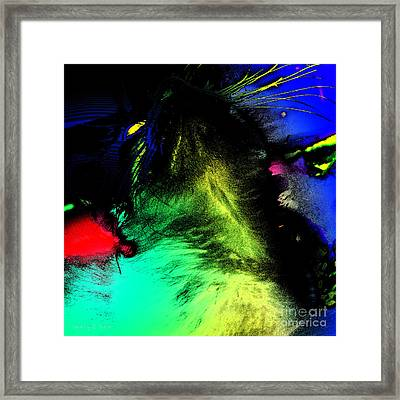 Everyday Abstract 50 Framed Print by Nancy E Stein