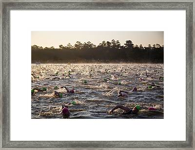 Everyone Swimming Framed Print