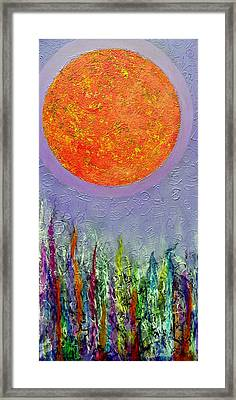 Everything Under The Sun Framed Print by Jim Whalen