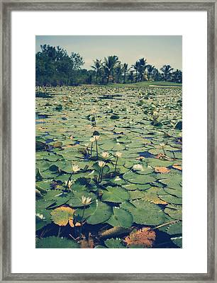Everything Zen Framed Print by Laurie Search