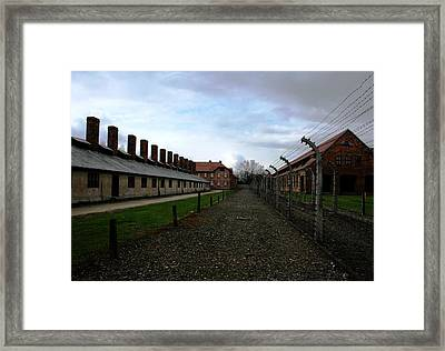 Framed Print featuring the photograph Evil Madness by Steve Godleski