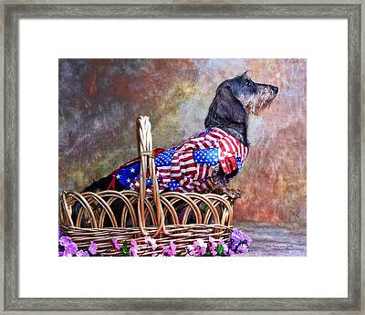 Framed Print featuring the photograph Evita by Jim Thompson
