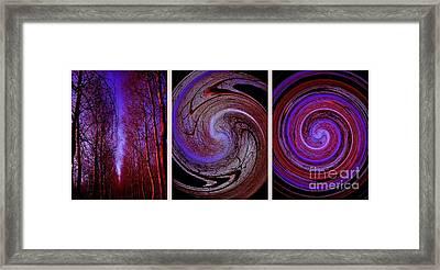 Evolution De La Foret En Spirale Framed Print