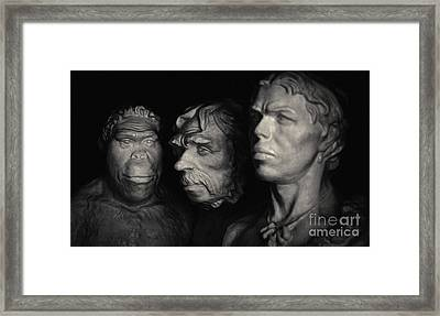 Framed Print featuring the pyrography Evolution by Evgeniy Lankin