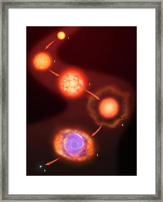 Evolution Of Stars - Sunlike Stars Framed Print