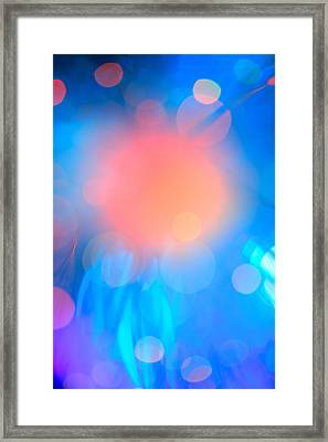 Framed Print featuring the photograph Evolution Orange by Dazzle Zazz