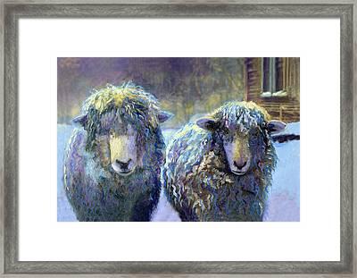 Ewe And Me 2 Framed Print by Cindy McIntyre