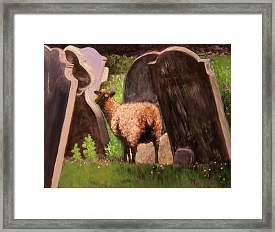 Ewe Spooked? Framed Print by Janet Greer Sammons