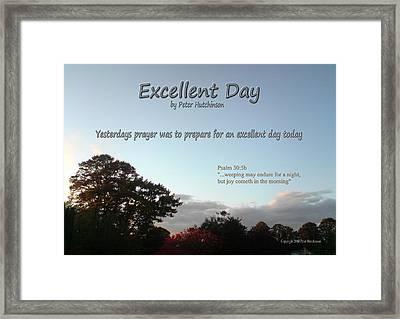 Excellent Day Framed Print