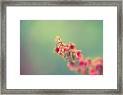 Exhale Framed Print by Shane Holsclaw