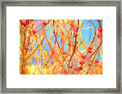 Exhuberance Framed Print