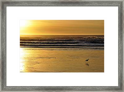 Framed Print featuring the photograph Exit Stage Right by AJ  Schibig